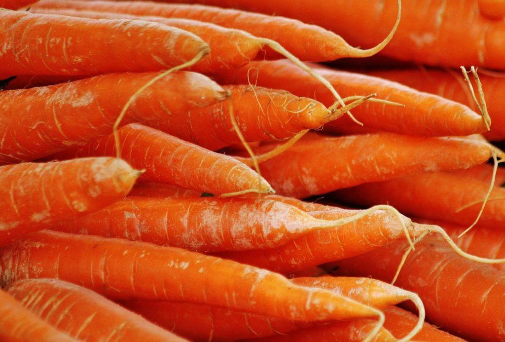 Karotten für Wühlmäuse
